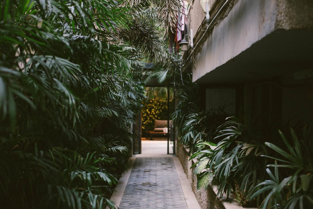 garden terras