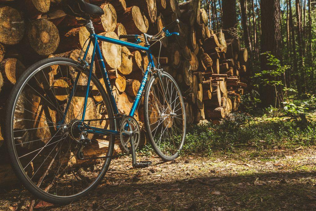 met de fiets op reis in Europa - blauwe fiets in het bos
